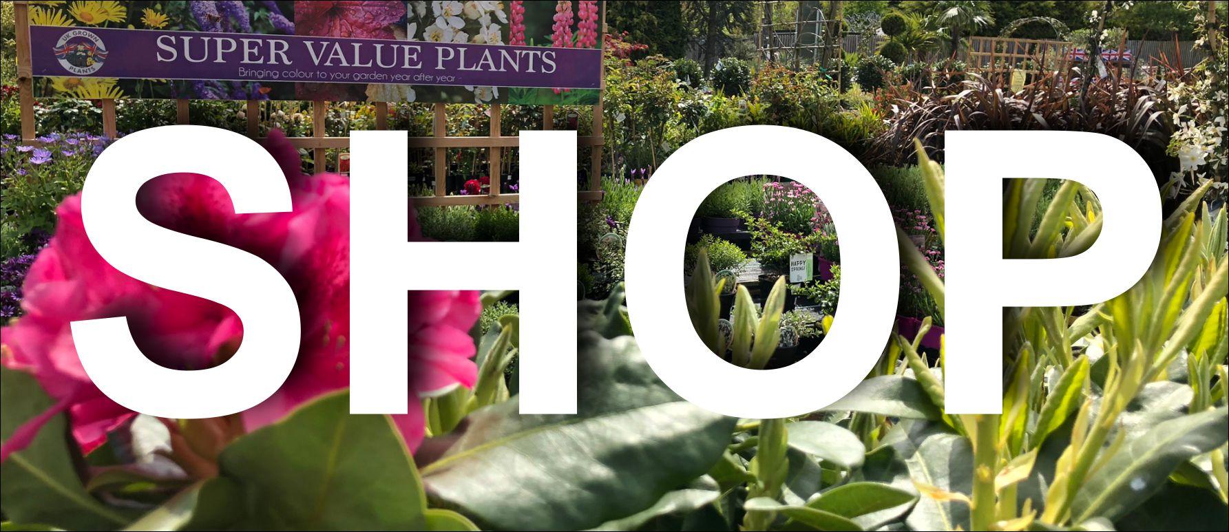 Garden Centre Flower Shop Home Hudson S Garden Centre